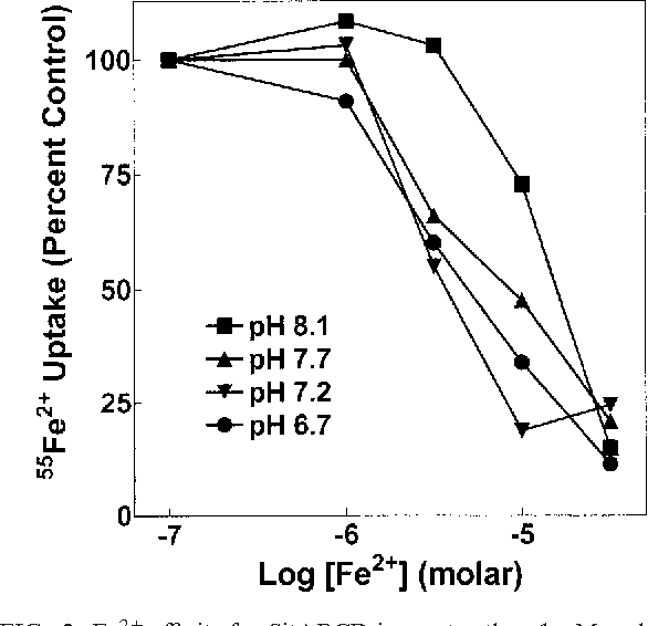 FIG. 3. Fe2 affinity for SitABCD is greater than 1 M and sensitive to pH. 55Fe2 uptake by SitABCD was measured in MM2639 (MM2524/pAJ113) as described in Materials and Methods with 100 nM extracellular 55Fe2 and increasing concentrations of nonradioactive Fe2 at the assay pH indicated, with each concentration tested twice. A single representative experiment of three similar experiments is shown. Errors ranged from about 5% at low total Fe2 concentrations to 3% at higher Fe2 concentrations.
