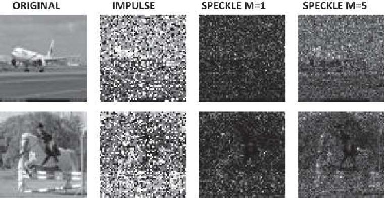 Figure 3 for Operational vs Convolutional Neural Networks for Image Denoising