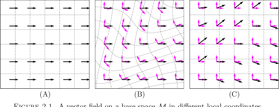 Figure 3 for Geometric Deep Learning and Equivariant Neural Networks
