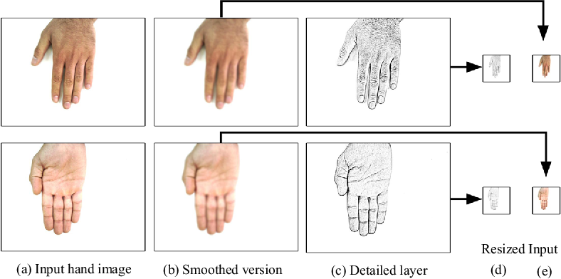 Figure 1 for 11K Hands: Gender recognition and biometric identification using a large dataset of hand images