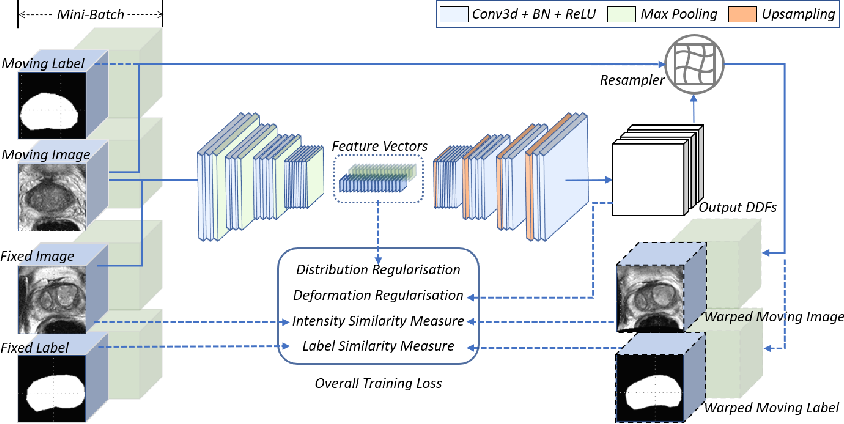 Figure 1 for Longitudinal Image Registration with Temporal-order and Subject-specificity Discrimination