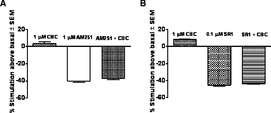 Figure 5 Effect of cannabichromene (CBC, 1 mM) alone and in combination with AM251 (1 mM, CB1 receptor antagonist, A) or rimonabant (SR1, 0.1 mM, CB1 receptor antagonist, B) on [35S]GTPgS binding to hCB1- CHO cell membranes (n = 12–16). CBC was added 30 min after the CB1 antagonists. Symbols represent mean values SEM.