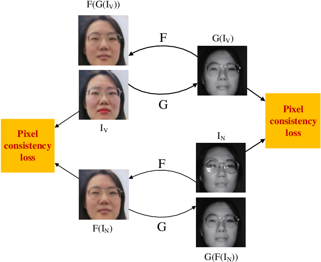 Figure 3 for Facial Feature Embedded CycleGAN for VIS-NIR Translation