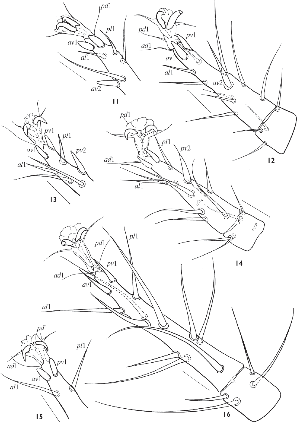 figure 11–16