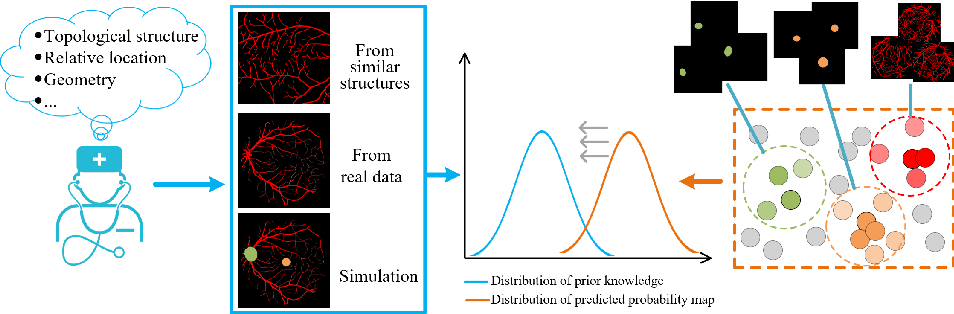 Figure 4 for Unsupervised Learning of Local Discriminative Representation for Medical Images