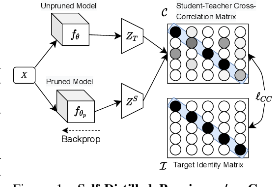 Figure 1 for Deep Neural Compression Via Concurrent Pruning and Self-Distillation
