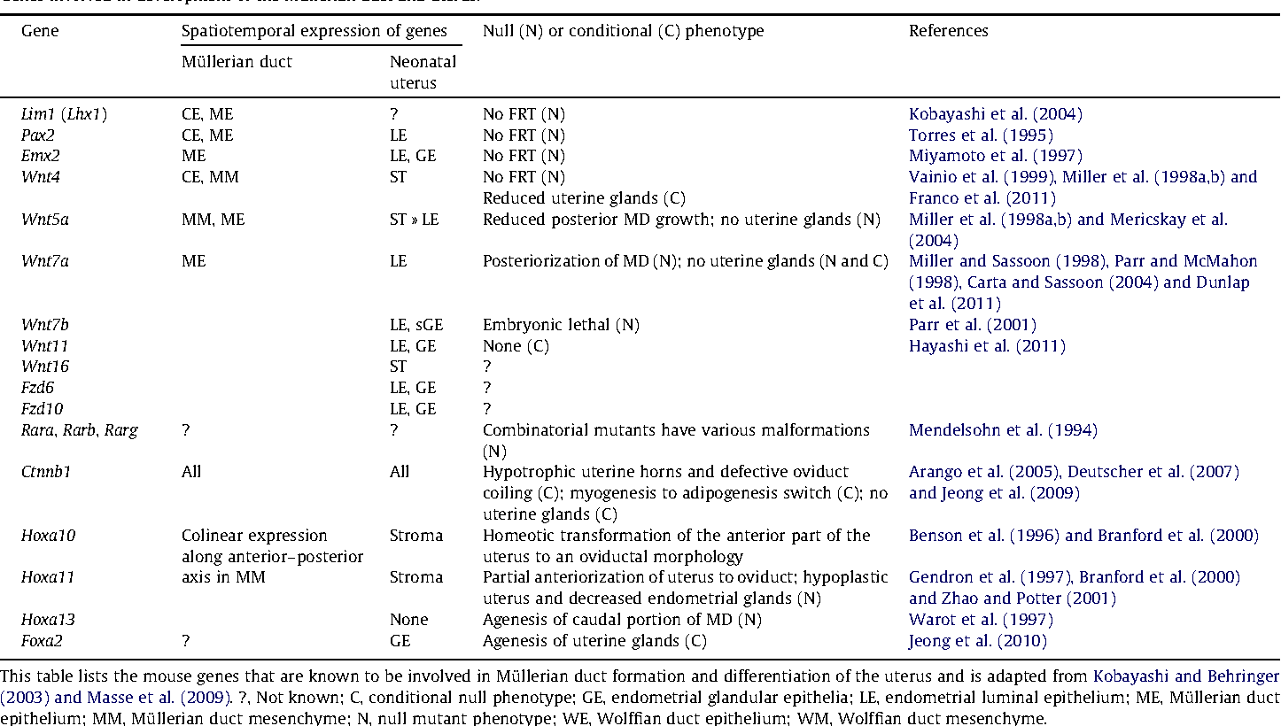 Table 1 Genes involved in development of the Müllerian duct and uterus.
