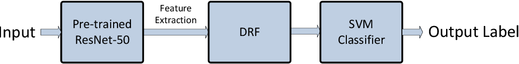 Figure 4 for Hierarchical Classification of Kelps utilizing Deep Residual Features