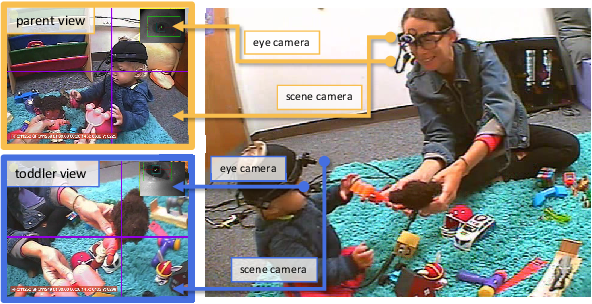 Figure 1 for Reverse-engineer the Distributional Structure of Infant Egocentric Views for Training Generalizable Image Classifiers