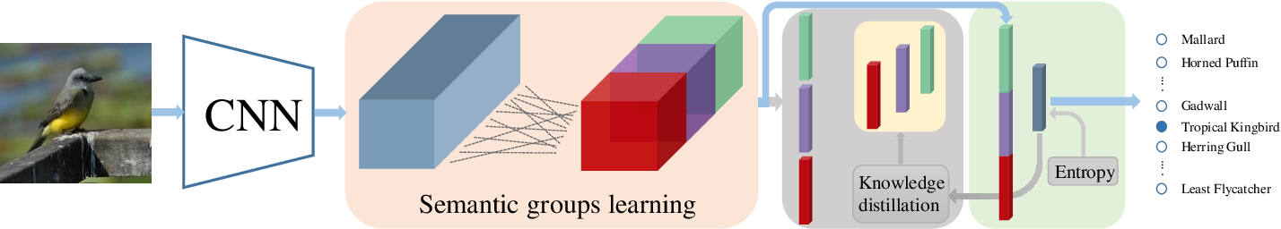 Figure 1 for Learning Semantically Enhanced Feature for Fine-Grained Image Classification