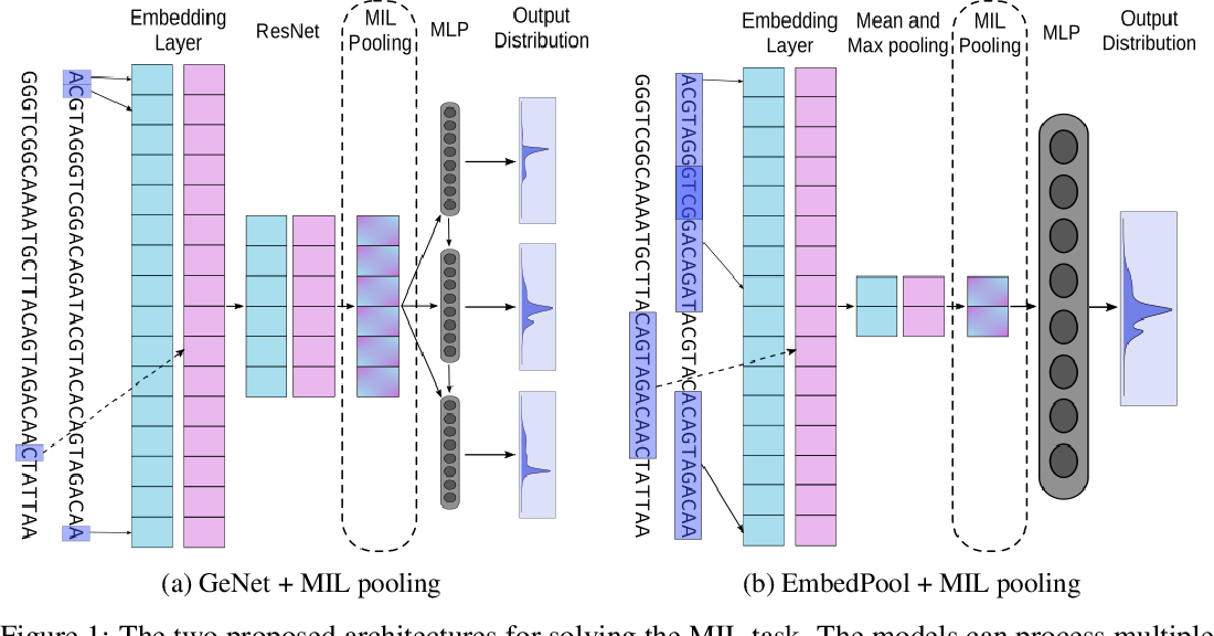 Figure 1 for Deep Multiple Instance Learning for Taxonomic Classification of Metagenomic read sets