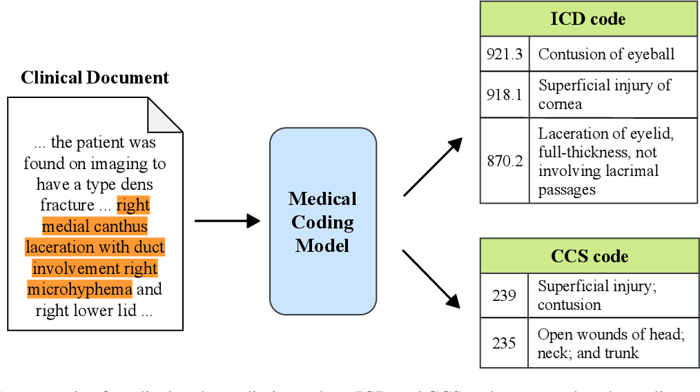 Figure 1 for Multitask Recalibrated Aggregation Network for Medical Code Prediction