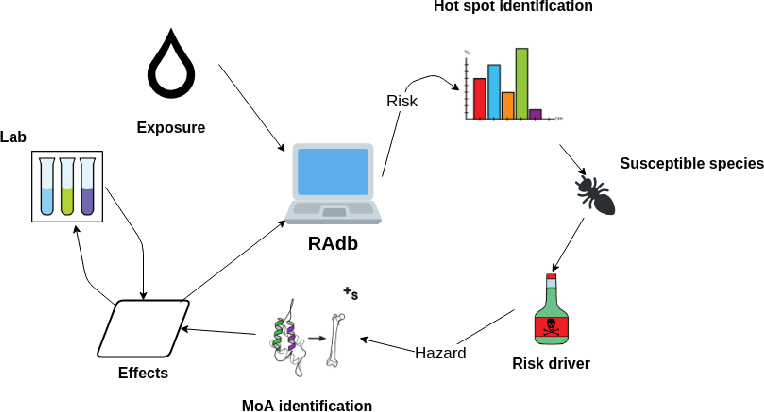 Figure 1 for Knowledge Graph Embedding for Ecotoxicological Effect Prediction
