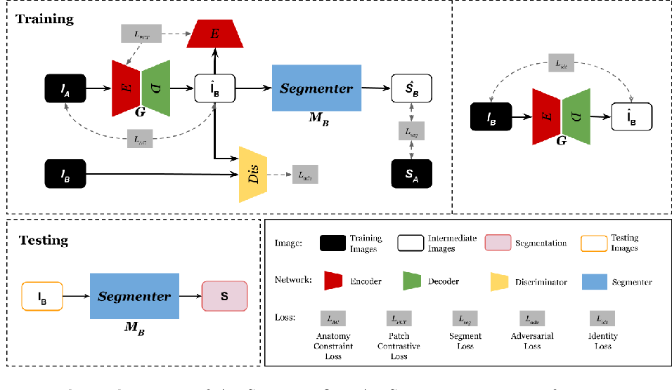 Figure 1 for Anatomy-Constrained Contrastive Learning for Synthetic Segmentation without Ground-truth