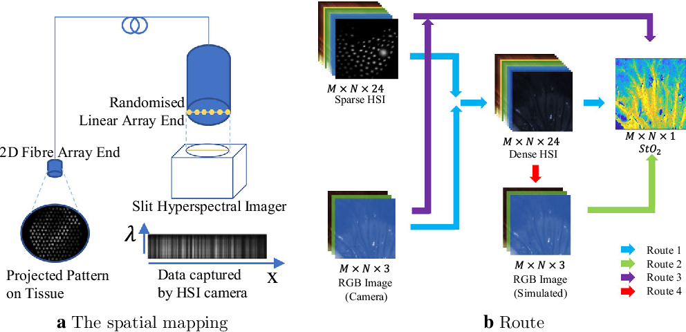 Figure 1 for Estimation of Tissue Oxygen Saturation from RGB images and Sparse Hyperspectral Signals based on Conditional Generative Adversarial Network