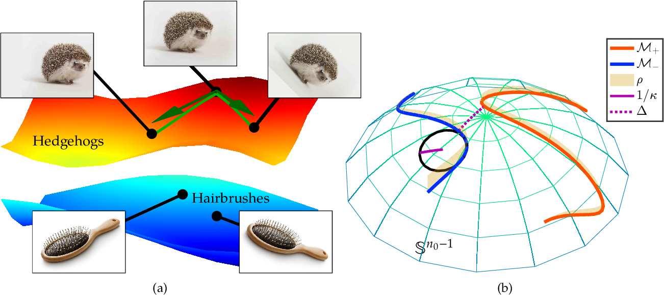 Figure 1 for Deep Networks and the Multiple Manifold Problem