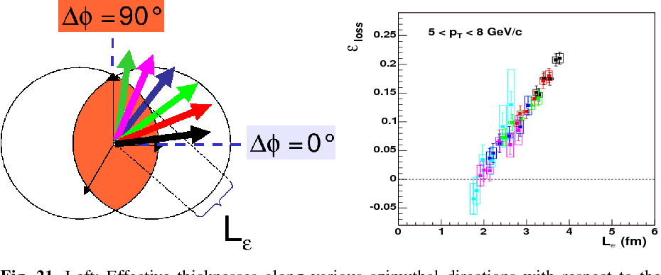 Fig. 21. Left: Effective thicknesses along various azimuthal directions with respect to the reaction plane in the overlap region of two heavy-ions. Right: Fraction of energy loss εloss versus effective path-length Lε measured for high-pT neutral pions in AuAu at 200 GeV [138].