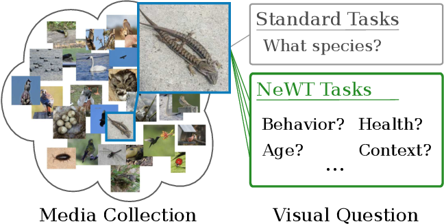 Figure 1 for Benchmarking Representation Learning for Natural World Image Collections