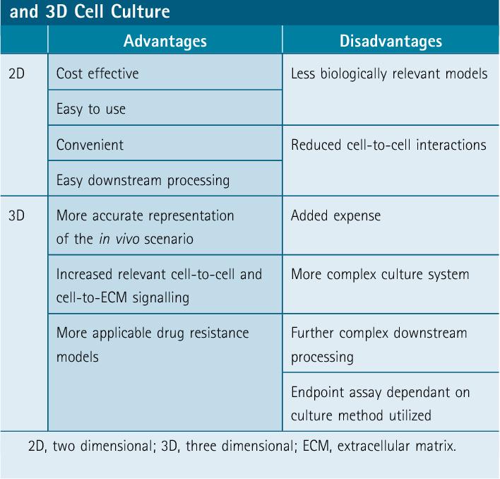 disadvantages of culture