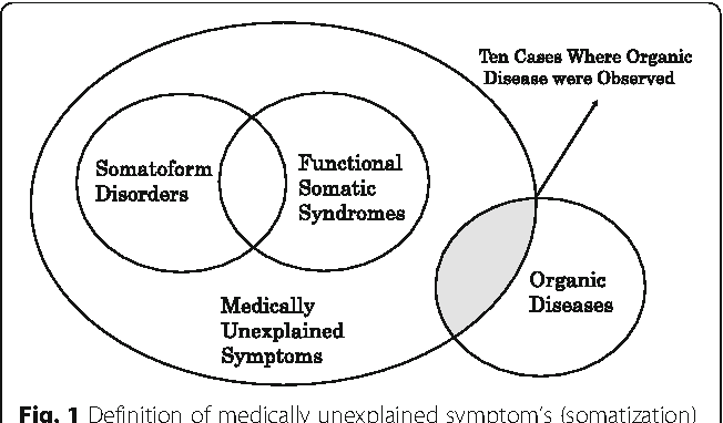 Fig. 1 Definition of medically unexplained symptom's (somatization) used in our study. Newly made based on reference eight