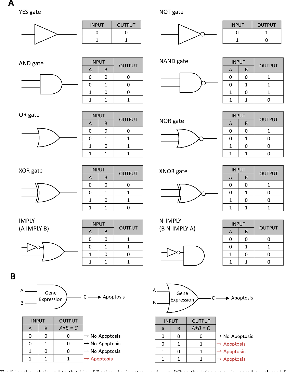 Figure 1 From Synthesizing Biomolecule Based Boolean Logic Gates