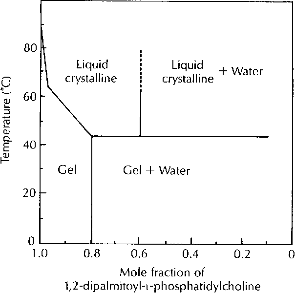 Fig 5. Phase diagram of 1,2-dipalmitoyl-l- phosphatidilcholine water. From Chapman et al 1967.