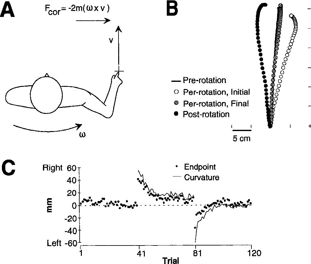 Coriolis force semantic scholar figure 1 pooptronica
