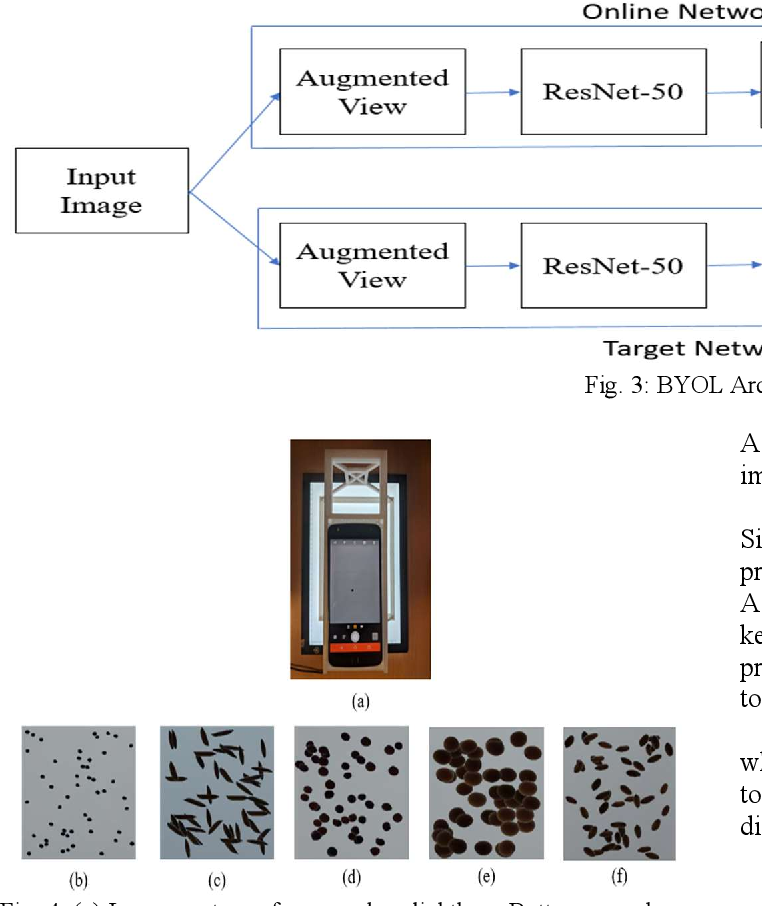Figure 1 for Classification of Seeds using Domain Randomization on Self-Supervised Learning Frameworks