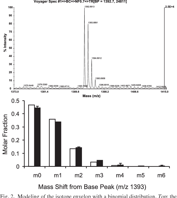 Determination Of Protein Synthesis In Vivo Using Labeling From