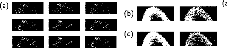 Figure 2 for Learning Graphical Models of Images, Videos and Their Spatial Transformations