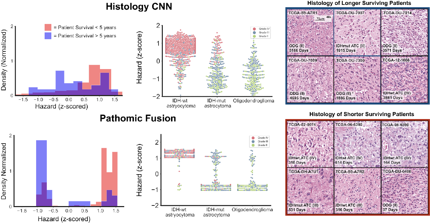 Figure 3 for Pathomic Fusion: An Integrated Framework for Fusing Histopathology and Genomic Features for Cancer Diagnosis and Prognosis