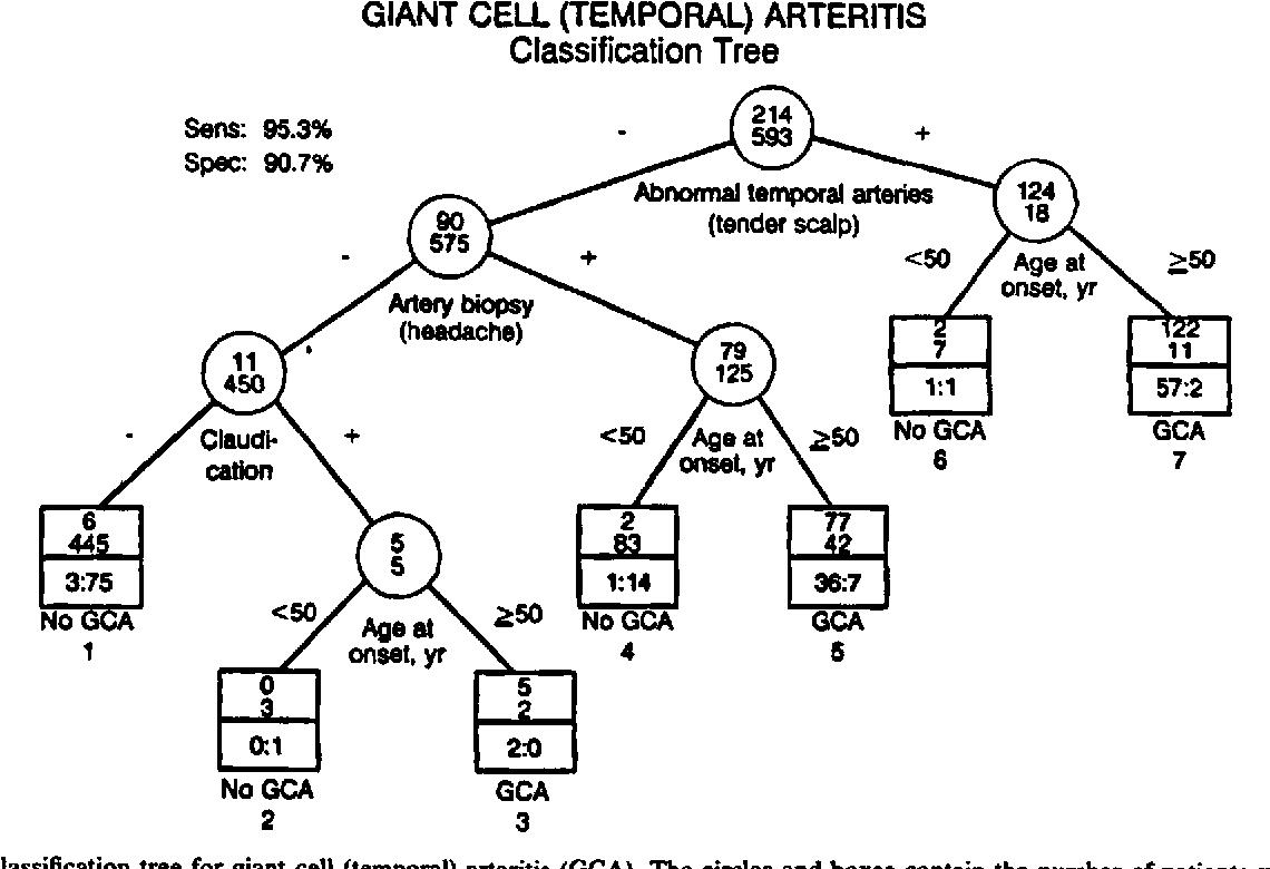Temporal Arteries - Semantic Scholar