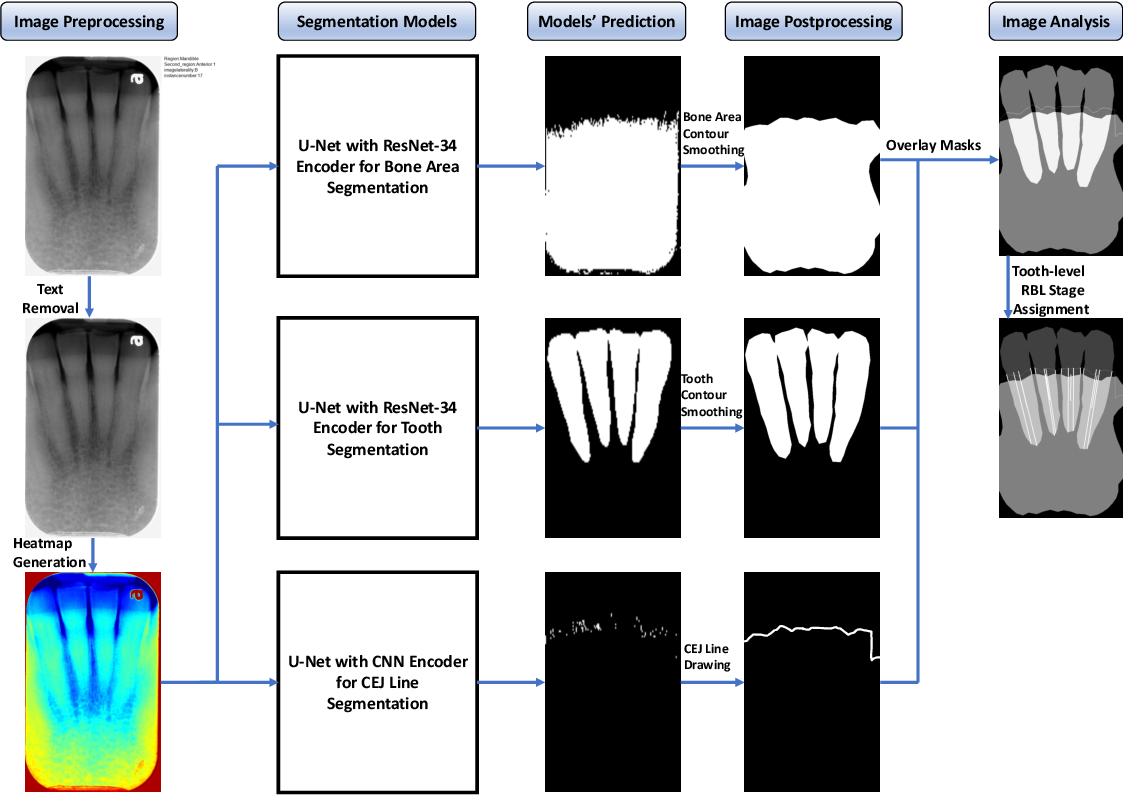 Figure 1 for Use of the Deep Learning Approach to Measure Alveolar Bone Level