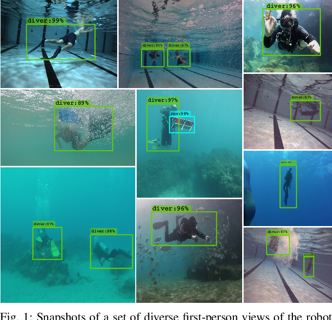 Figure 1 for Towards a Generic Diver-Following Algorithm: Balancing Robustness and Efficiency in Deep Visual Detection