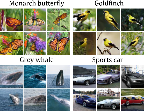Figure 4 for Conditional Transferring Features: Scaling GANs to Thousands of Classes with 30% Less High-quality Data for Training