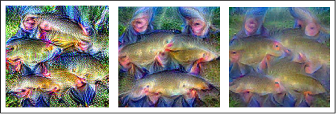 Figure 1 for Saliency-driven Class Impressions for Feature Visualization of Deep Neural Networks