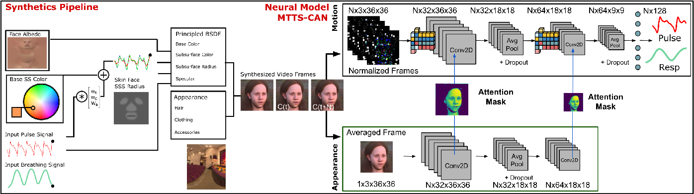 Figure 2 for Synthetic Data for Multi-Parameter Camera-Based Physiological Sensing