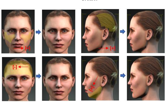 Figure 4 for Methodology for Building Synthetic Datasets with Virtual Humans