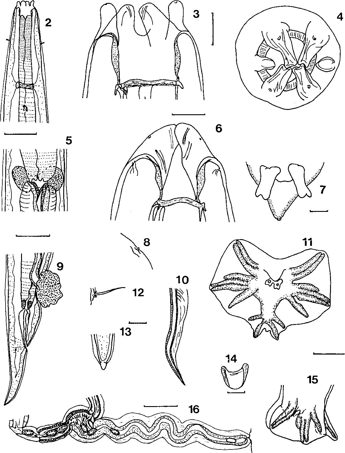 figure 2–16