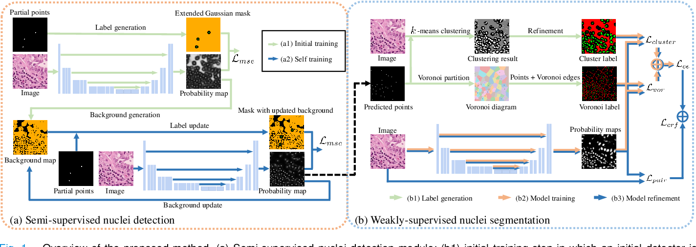Figure 1 for Weakly Supervised Deep Nuclei Segmentation Using Partial Points Annotation in Histopathology Images