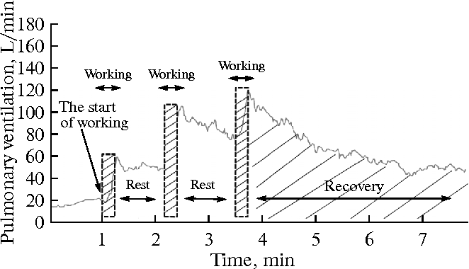 Rates of breathing values and kinetics of respiration response in figure 3 ccuart Images