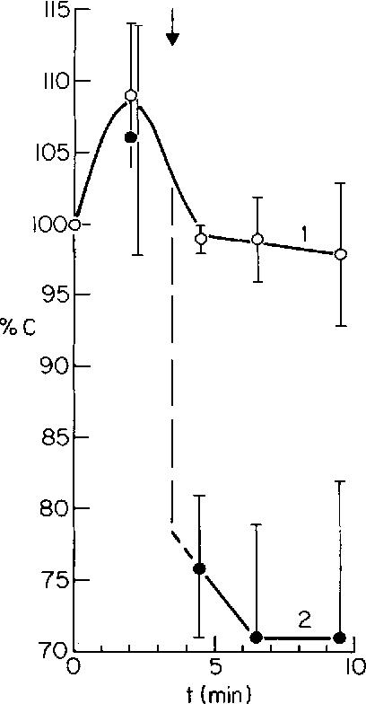 figure 8
