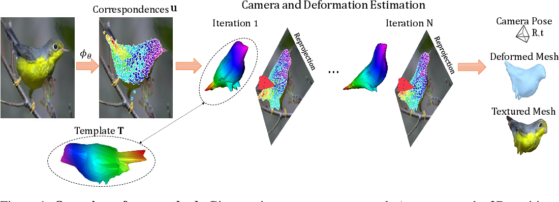 Figure 1 for To The Point: Correspondence-driven monocular 3D category reconstruction