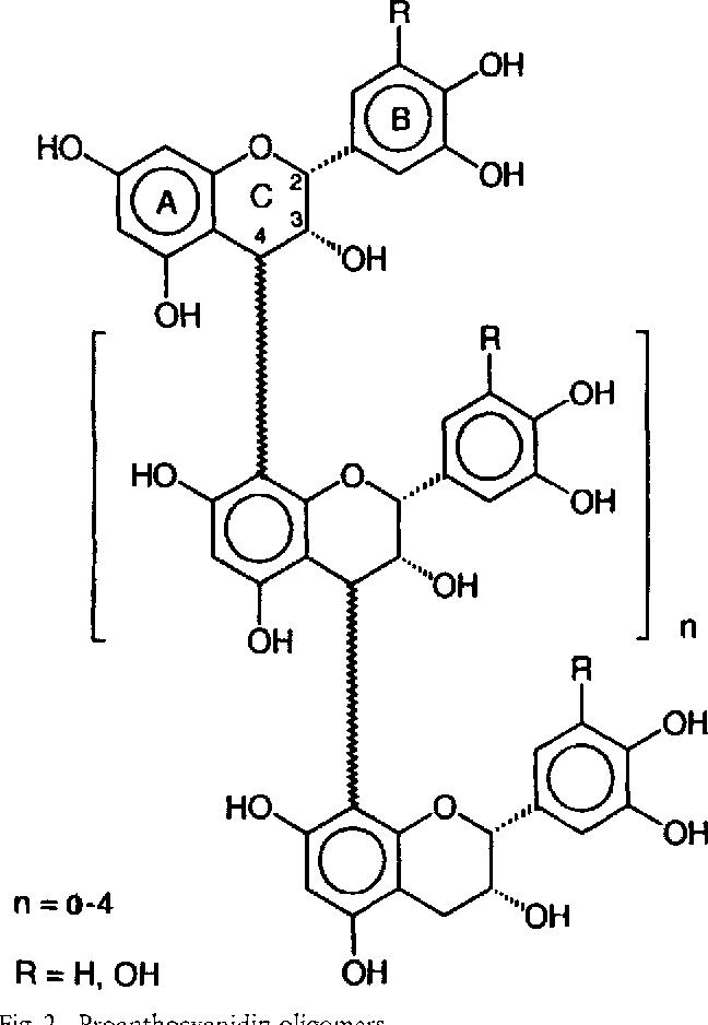 Figure 2 From Guiera Senegalensis J F Gmelin Combretaceae