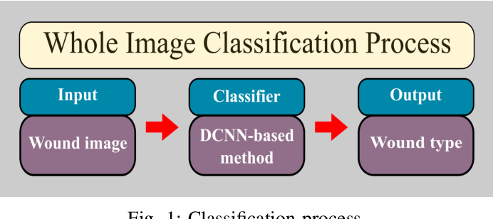 Figure 1 for Multiclass Wound Image Classification using an Ensemble Deep CNN-based Classifier
