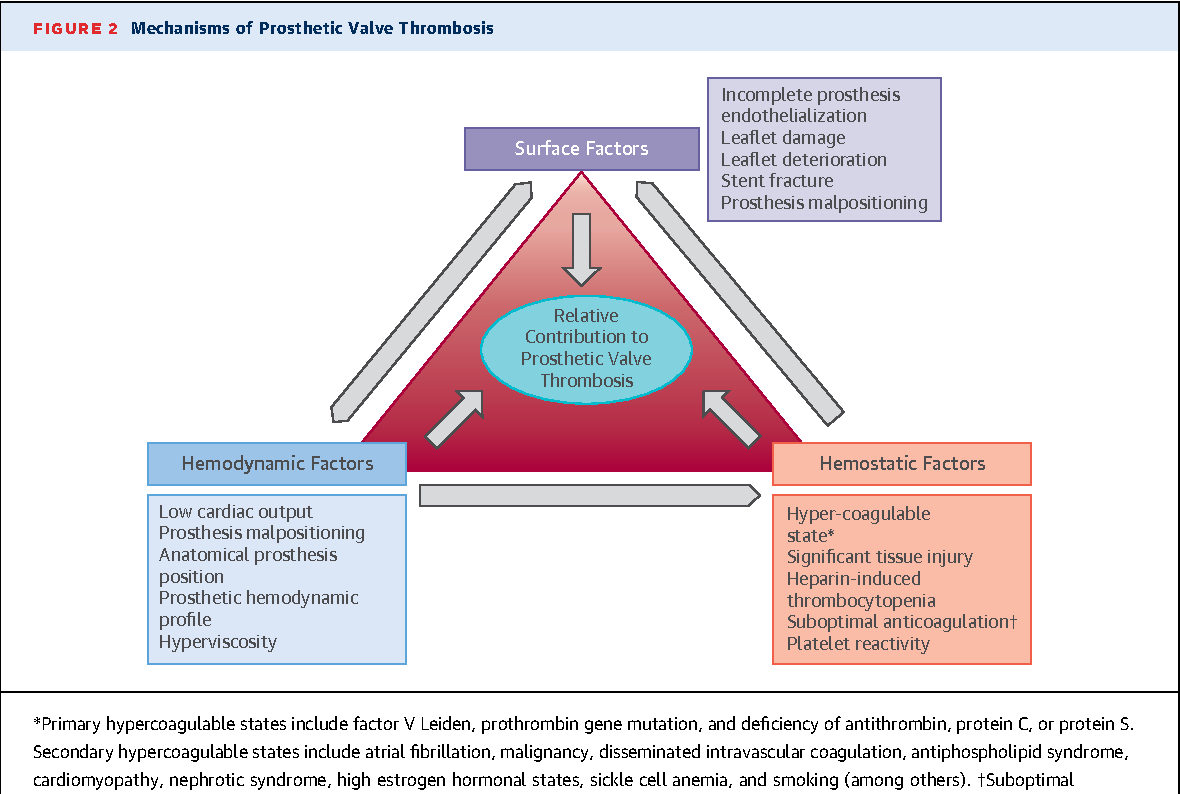 Figure 2 from Prosthetic Heart Valve Thrombosis. - Semantic Scholar