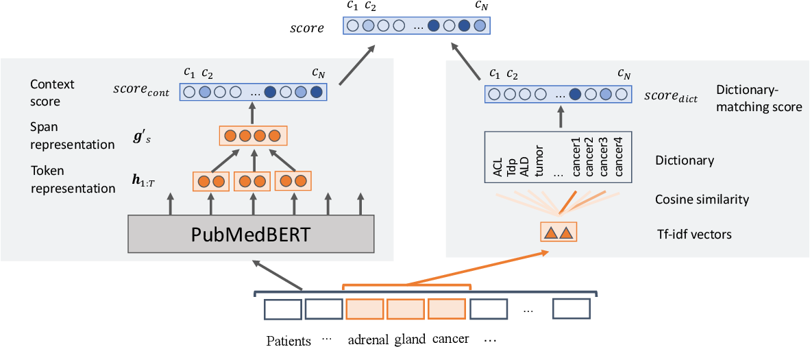 Figure 1 for End-to-end Biomedical Entity Linking with Span-based Dictionary Matching