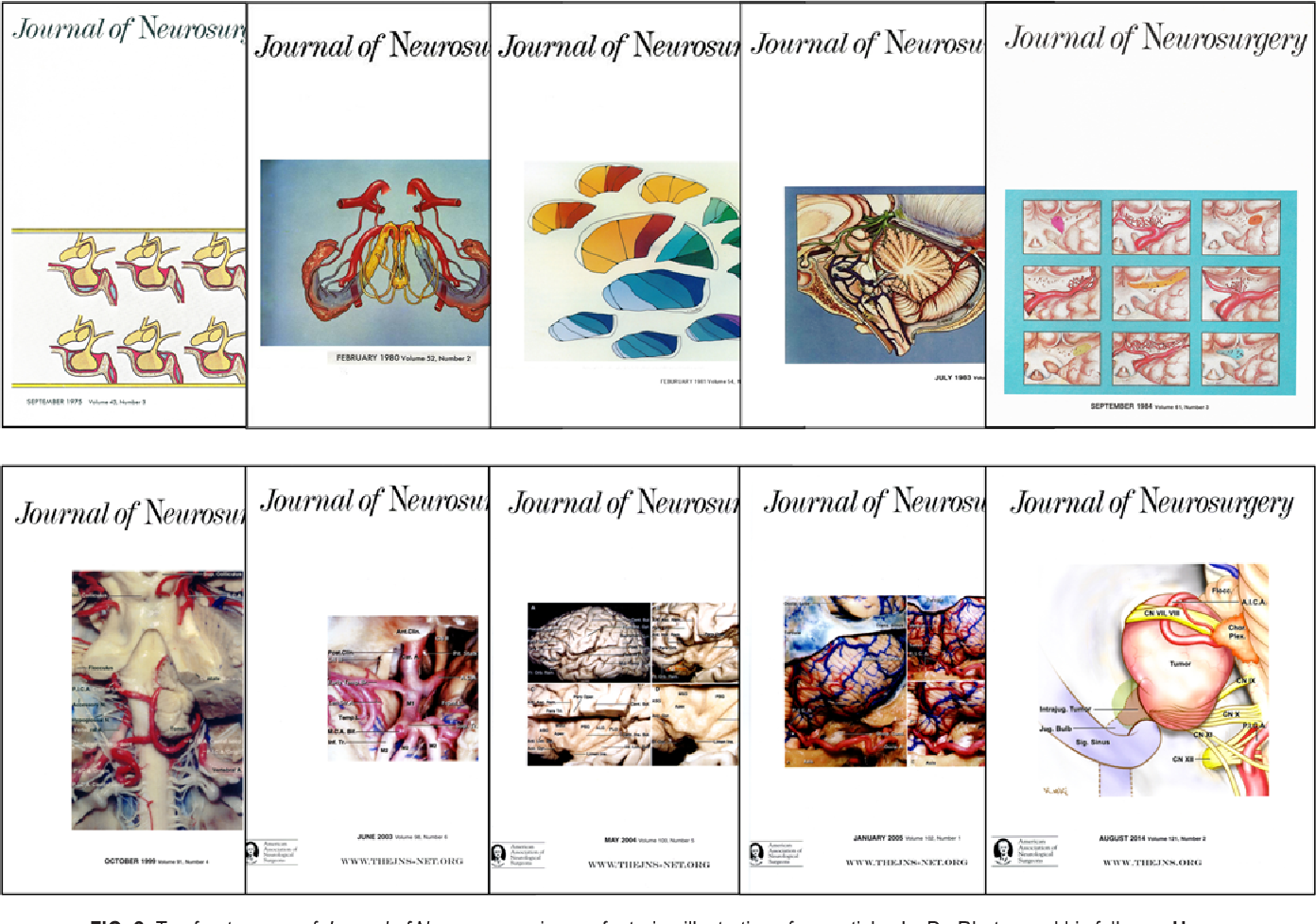 Figure 2 from The microneurosurgical anatomy legacy of Albert L ...