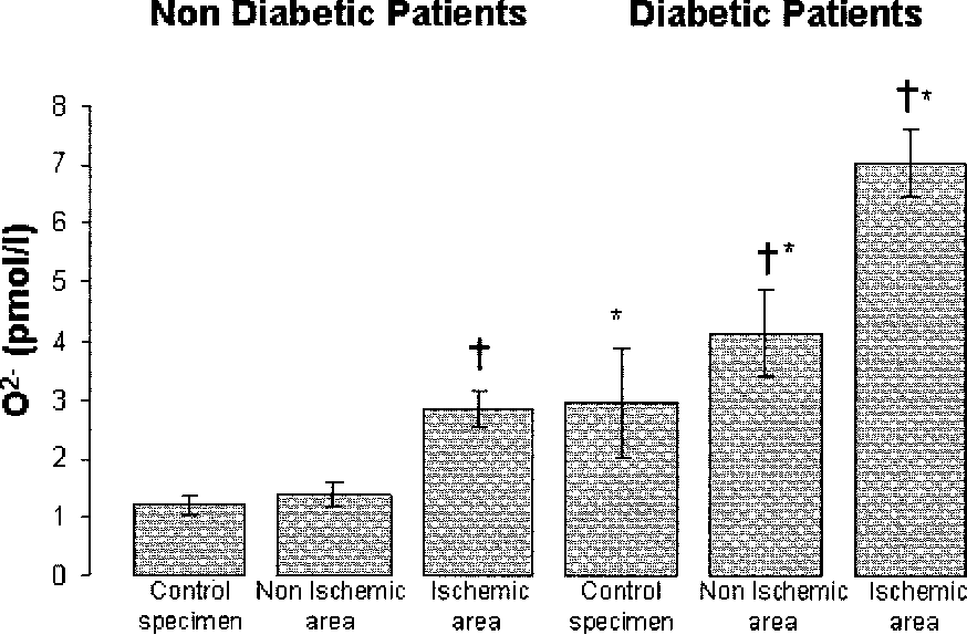 FIG. 5. O2 levels in heart specimens from patients with and without diabetes. *P < 0.001 vs. nondiabetic patients; †P < 0.001 vs control specimens.