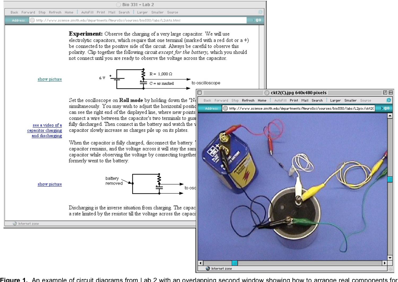 PDF] An Online Lab Manual for Neurophysiology - Semantic Scholar